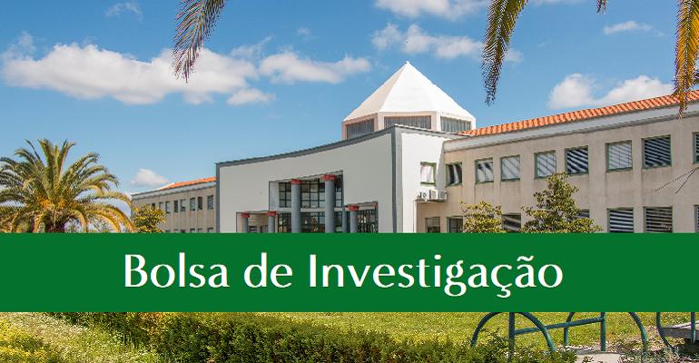 CANDIDATURA A BOLSAS DE INVESTIGAÇÃO